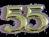 55-JÄHRIGES MATURAJUBILÄUM HAK 1965